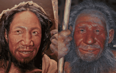 Homo sapiens, un singe comme les autres? Question pour une (re)médiation scientifique