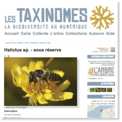 Les Taxinomes