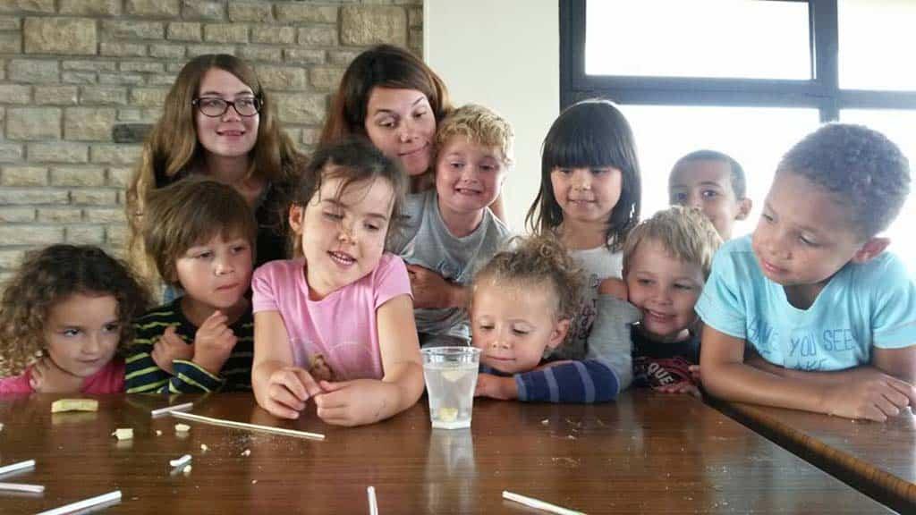#Caen. La science s'invite à l'école pour la Semaine du développement durable