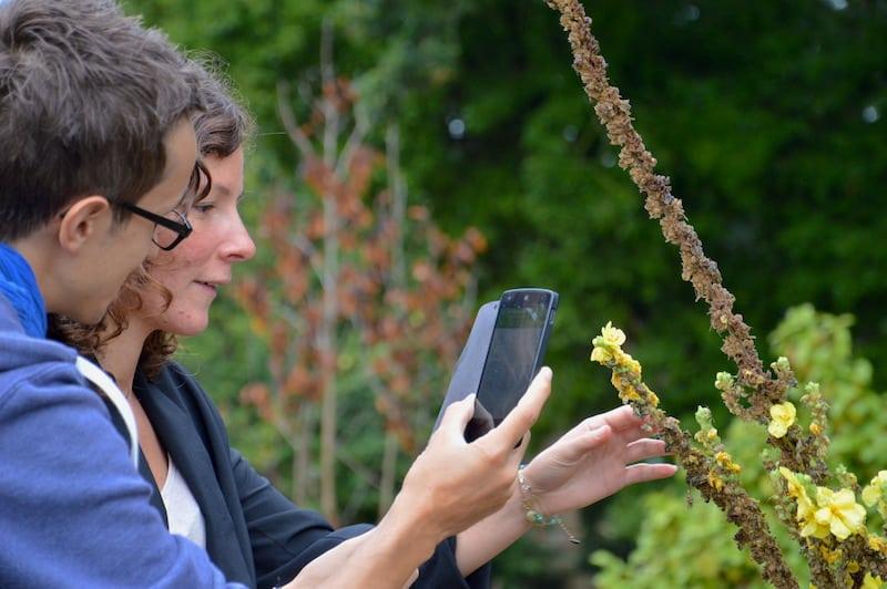 Biodiversité et numérique – Village des Sciences de La Roche