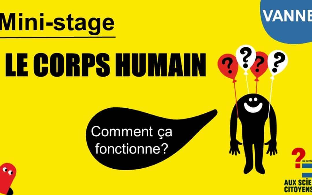 MINI-STAGE Le Corps Humain: Comment ça fonctionne?