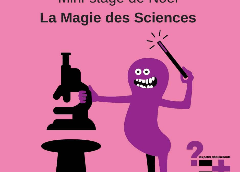 "Mini-Stage ""La Magie des Sciences"""