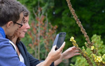 Pays de la Loire. Le projet Transitions2 allie numérique et écologie