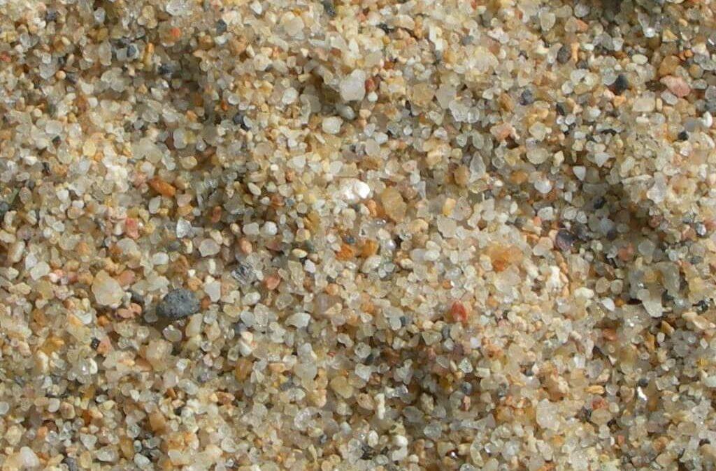 [Etel] Fête du Grand site de Gâvres – atelier sur le sable