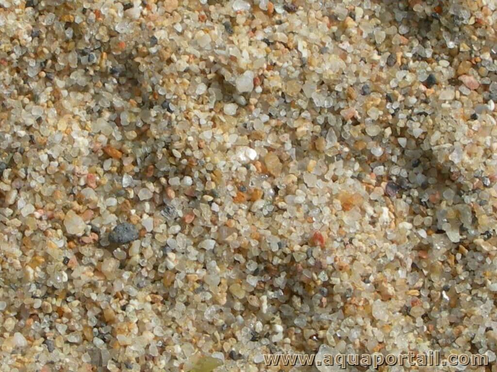 [Etel] Fête du Grand site de Gâvres - atelier sur le sable