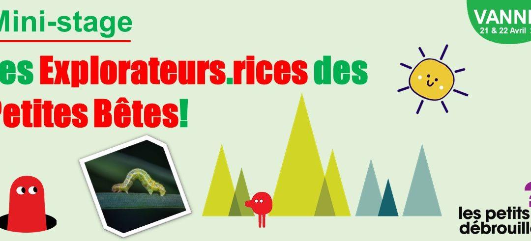 Vannes – Mini-Stage: Les Explorateurs.rices des Petites Bêtes – Vacances d'Avril