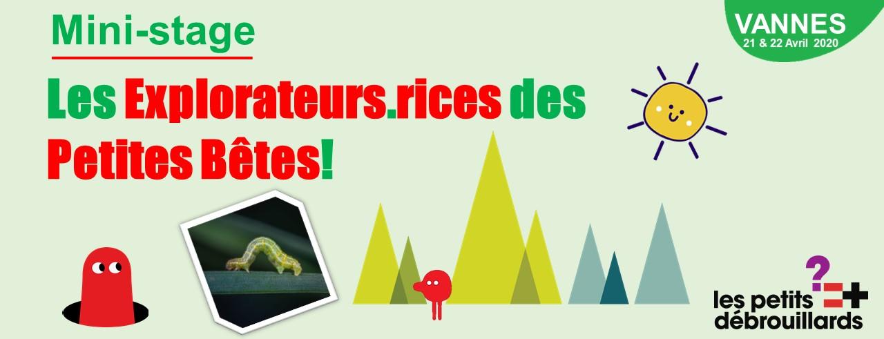 Vannes - Mini-Stage: Les Explorateurs.rices des Petites Bêtes - Vacances d'Avril