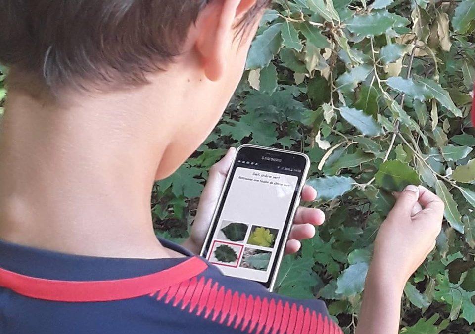 Promenade biodiversité et numérique à Louerre