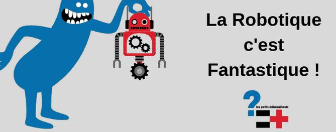 """Stage scientifique  – 10-14 ans : """"Robot insecte vibreur!"""" pendant les vacances scolaires à Lannion"""