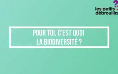 Interview – La biodiversité selon les jeunes