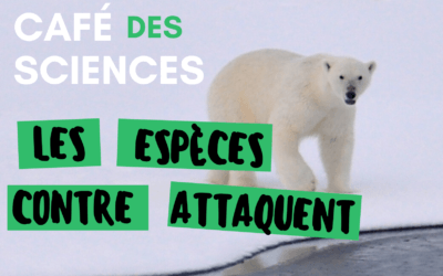 Le Mans – Café des sciences : les espèces contre-attaquent!