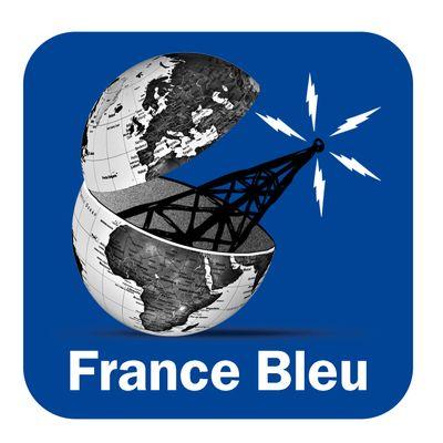 Les petits débrouillards grand ouest présentent le wikidébrouillard sur France Bleu Bretagne