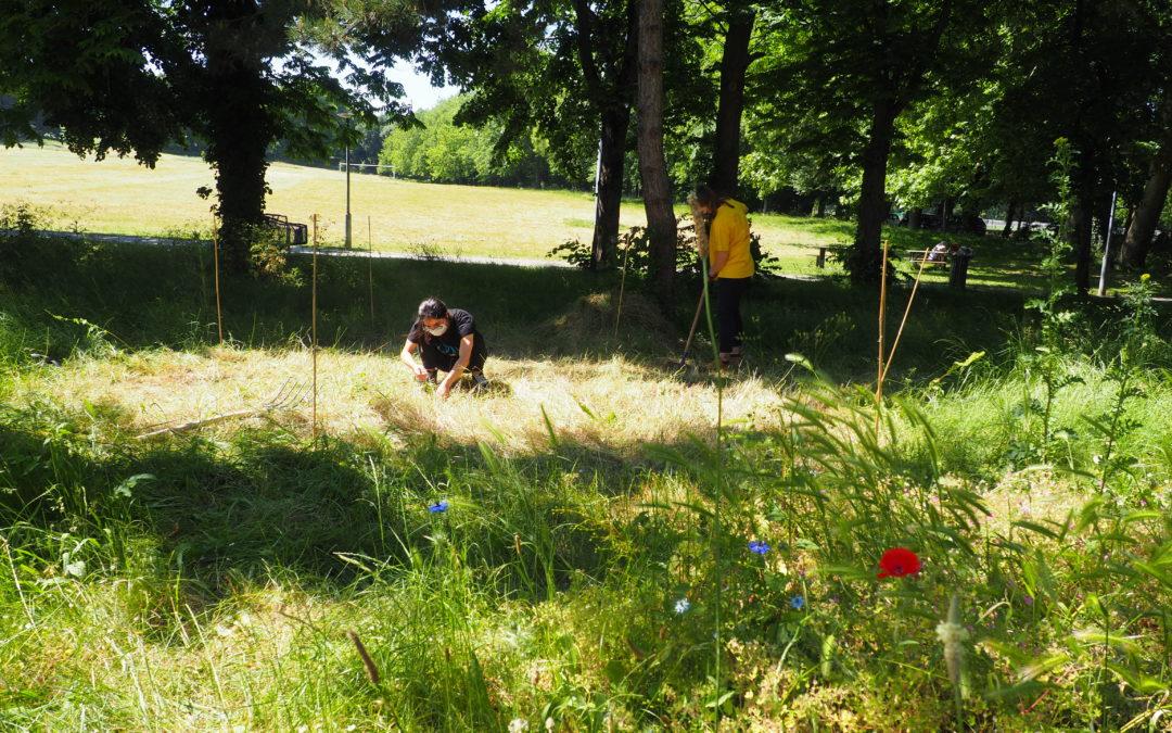 Nantes. Printemps + soleil = Le Labo des Jardinautes