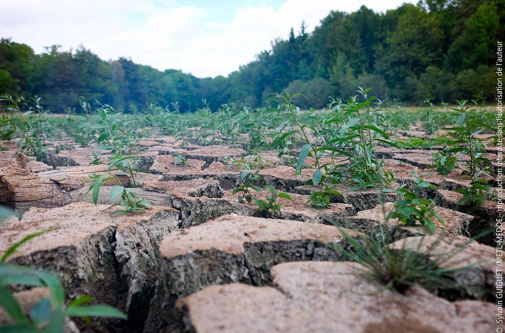"""Caen. Interview #3- Café des sciences : """"Climat et agriculture"""""""