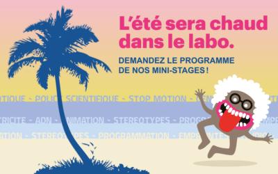 Brest. Demandez le programme de l'été!