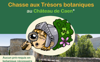 Caen. Un livret pour une chasse aux trésors botaniques