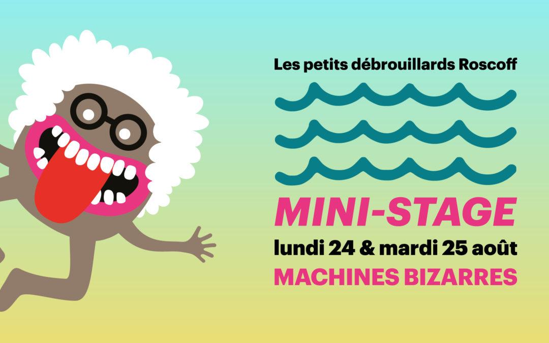 [Roscoff] Mini-stage 7-12 ans «Machines bizarres»