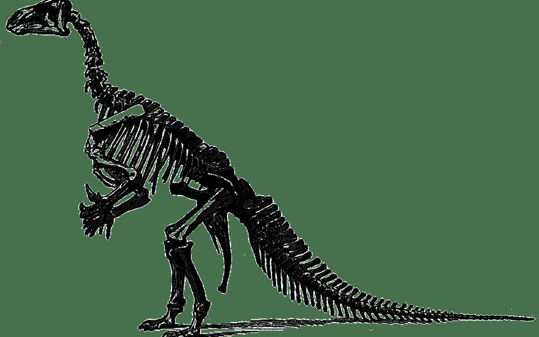[Quimper] Dino Park – Les Mercredis des Sciences