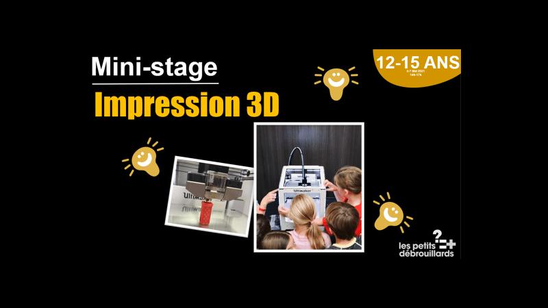 Vannes 12-15 ANS Mini-Stage Impression 3D du 5 au 7 Mai 2021