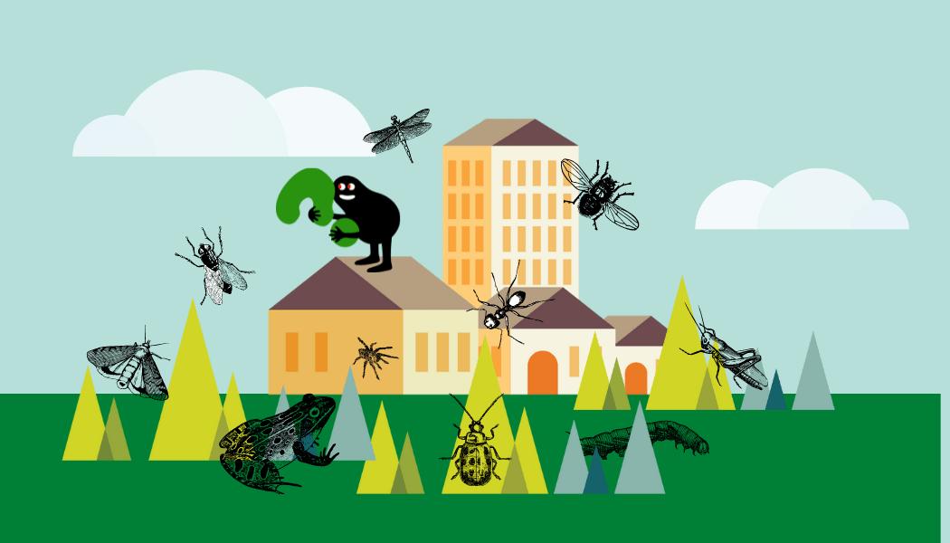Nantes – Stage : La biodiversité dans tous ses états (6-12 ans)